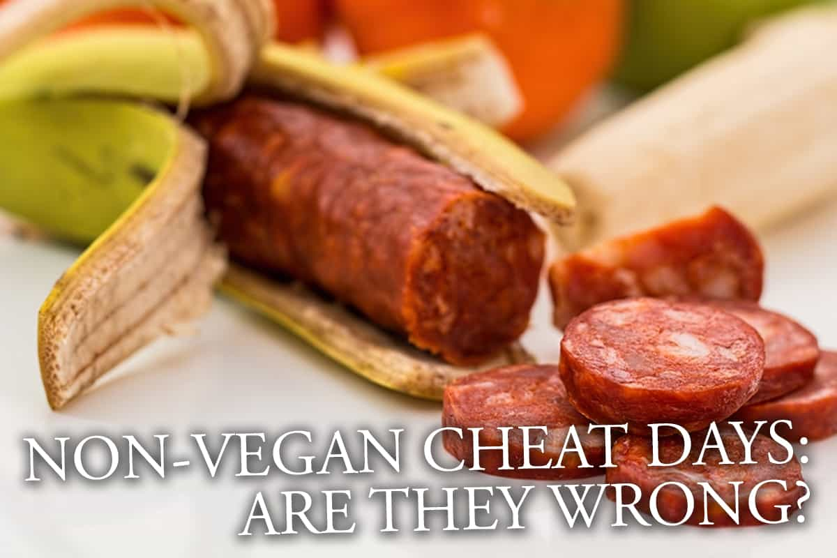 Non-Vegan Cheat Days: Are They Wrong?