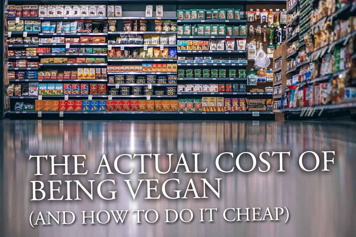 The ACTUAL Cost Of Being Vegan (And How To Do It Cheap)