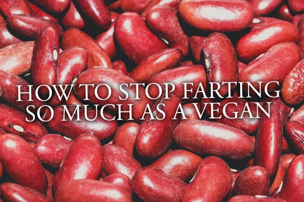 17 Tips To Stop Farting So Much On A Vegan Diet